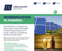 Diversification In Farming