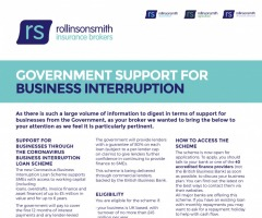 Government Support For Business Interruption